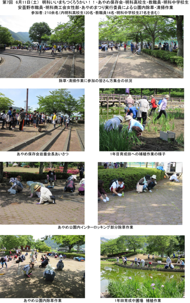 第7回除草・清掃(6月11日)-1